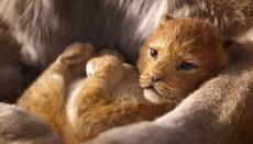 Nový trailer a plakát ke Lvímu králi
