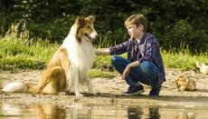 Nejslavnější pes v dějinách se vrací do kin