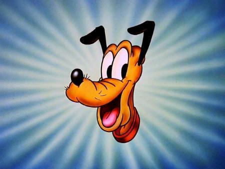 Pluto je hodný žlutphnědý pejsek